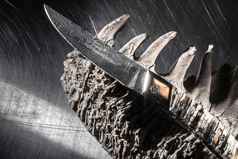Couteau Le Thiers® Dozorme sur molaire de mammouth